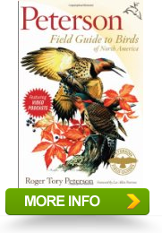 Peterson Field Guide To Birds Of North America Guides In
